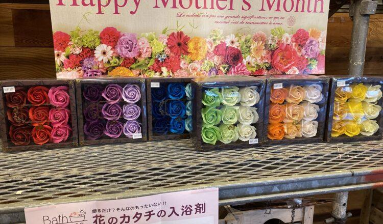 【オンズガーデン】 母の日ギフトは今月まで!