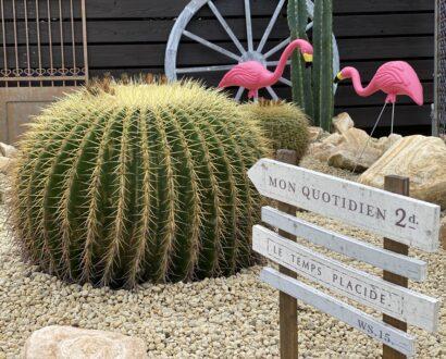 【オンズガーデン】お庭に仲間が増えました♪